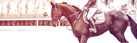 Beautiful girl on black horse in jumping show, equestrian sports, duotone, black and white. Horse and girl in uniform going to jump. Horizontal web header or banner design.