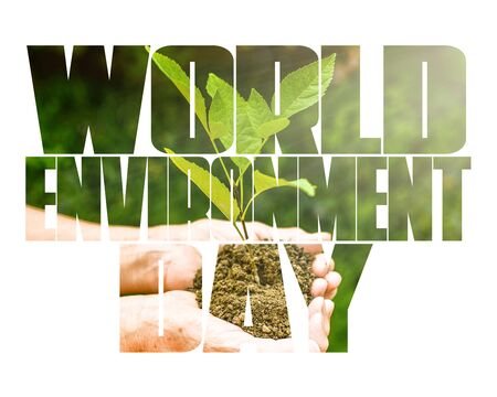 World Environment Day text, old and young hands, green sprout, white background. Elcology, hunger, poorness, need. Team work, sea, plastic pollution, charity, compassion, overpopulation, virus. Фото со стока