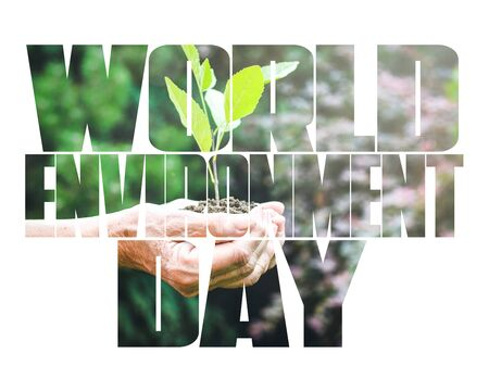World Environment Day text, old and young hands, green sprout, white background. Elcology, hunger, poorness, need. Team work, sea, plastic pollution, charity, compassion, overpopulation, virus. Stock Photo