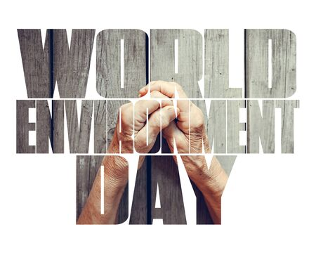 World Environment Day fill text, old and young hands, red heart image cut, white background. Elderly people health, hunger, poorness, need. Teamwork business, charity, compassion, virus outbreak.
