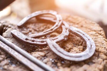 Modern horseshoes are most commonly made of steel and nailed into the hoof wall.
