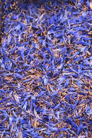phytotherapy: Dry medicinal plants, ingredients for phytotherapy, cornflower.Background
