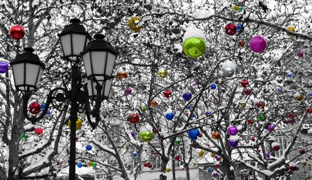 christmas in the city: Trees decorated with Christmas baubles under the snow. Stock Photo