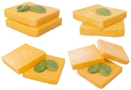 pasteurized: yellow chedder cheese and leaf argula salad. isolated on white background.