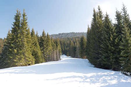 slope: winter resort slope track Stock Photo