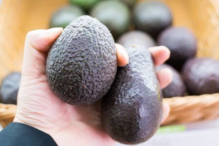 Avocado also refers to the Avocado trees fruit, which is botanically a large berry containing a single seed.