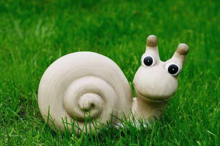Snail on grass, outdoor,