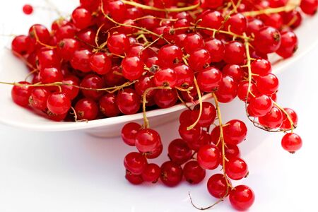 Redcurrant in a white dish Stock Photo - 3357384
