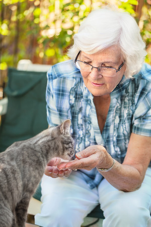 Senior woman having fun with a cat in the garden, focus on woman photo