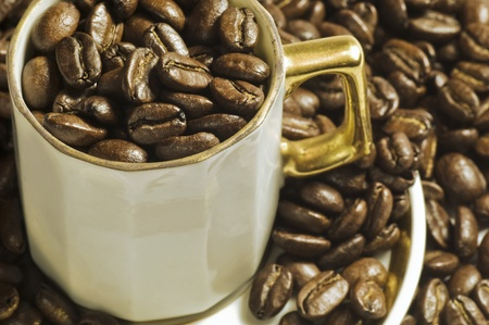 Coffee beans in cup Stock Photo - 8278829