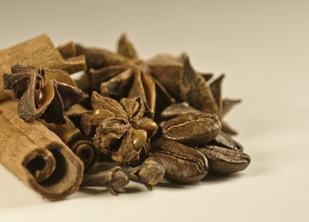 cinamon coffe and staranise close up on white background Stock Photo - 8278849