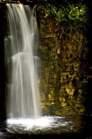 Hoggs Falls Stock Photo - 8287724