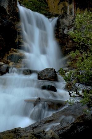 Tangle Falls in Canadian Rockies Stock Photo - 8287701