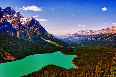 peyto lake in alberta rockies