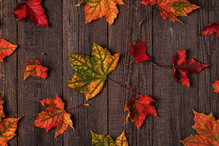 Beautiful multi-colored autumn leaves on a wooden background.
