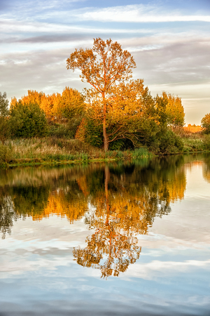 Autumn landscape with water and colorful trees. Stock Photo