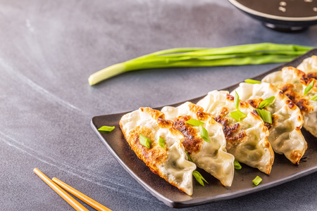 Gyoza or dumplings snack with soy sauce, selective focus, copy space. Standard-Bild - 120162897