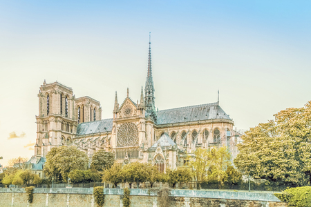 The Cathedral of Notre Dame de Paris, France 免版税图像 - 122117986