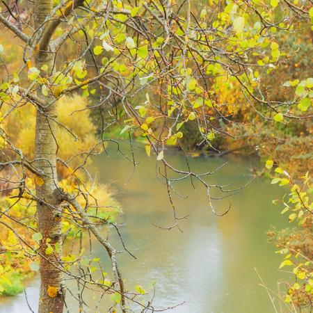 Autumn park with river