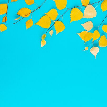 Autumn yellow leaves on a blue background.