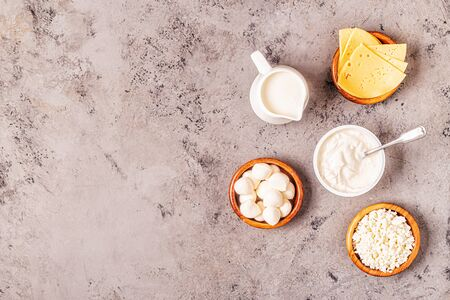 Probiotics fermented dairy products - yogurt, kefir, cottage cheese, mozzarella and gouda cheeses.