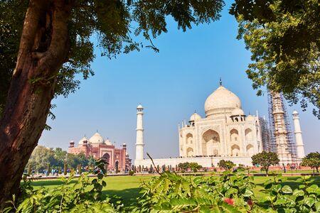 Taj Mahal, Indien Standard-Bild - 99794938