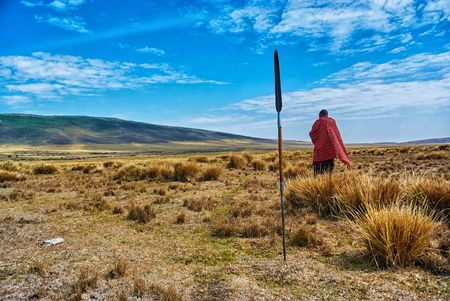 Masai trekking walking in the Ngorongoro conservation area in Tanzania with grass and blue sky