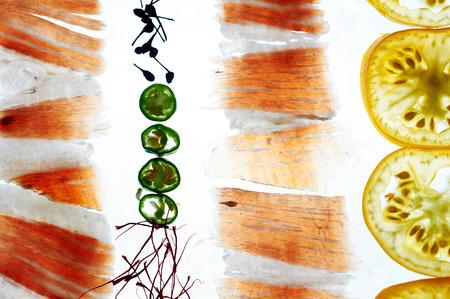 Transparency food pata negra iberico ham serano tomato chili pepper saffron Banque d'images - 101016570