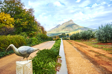 Stellenbosch is a town in the Western Cape province of South Africa. Banque d'images - 105597197