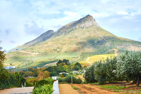 Stellenbosch is a town in the Western Cape province of South Africa. Banque d'images - 105597203