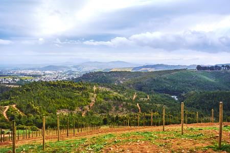 Stellenbosch is a town in the Western Cape province of South Africa, situated about 50 kilometres (31 miles) east of Cape Town. Banque d'images - 105597299
