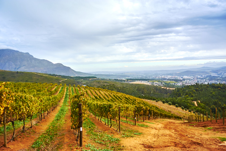 Stellenbosch is a town in the Western Cape province of South Africa, situated about 50 kilometres (31 miles) east of Cape Town Banque d'images - 103029365