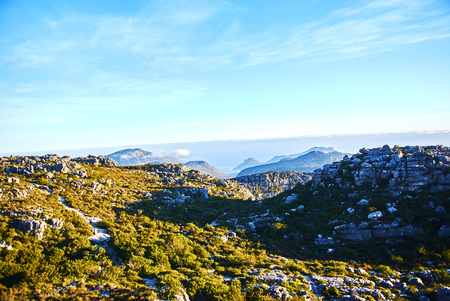 Table Mountain National Park, previously known as the Cape Peninsula National Park, is a national park in Cape Town, South Africa. 写真素材