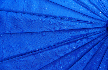 thundershower: Umbrellas filled with rain drops .