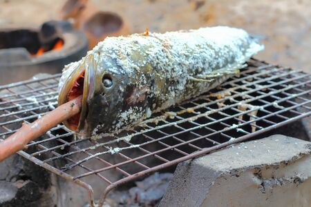 snakehead: snakehead,Fish grilled on charcoal , traditional thailand .