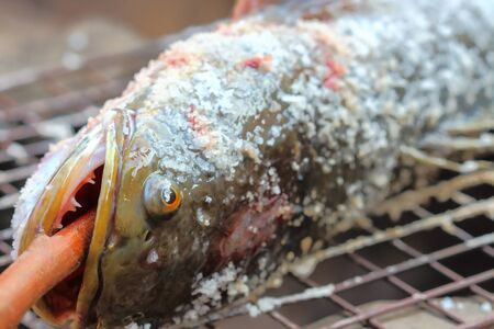 snakehead,Fish grilled on charcoal , traditional thailand .