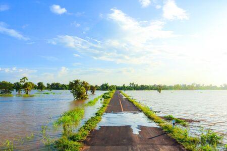 Rural road beautiful  in Thailand.