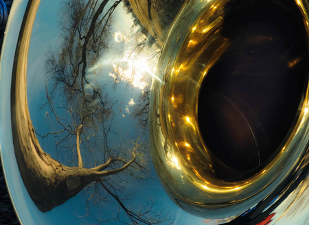 tuba: Tree refelected in tuba