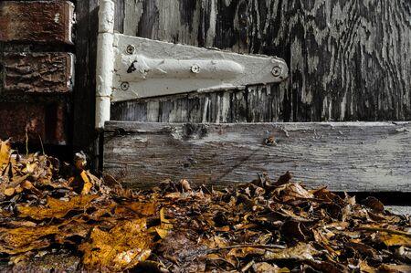 Autumn Leaves Under a Garage Hinge Imagens