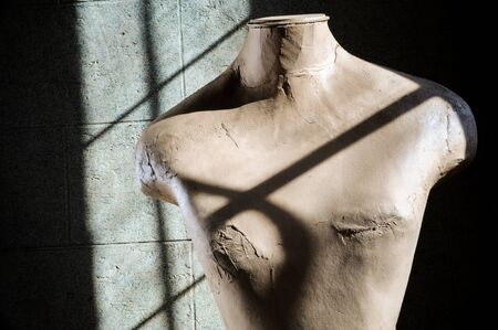 shadowy: Mannequin Torso in Shadowy Light Stock Photo