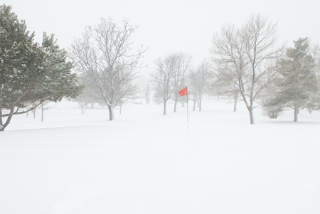 Golf Pin Red Flag Blowing in a Snow Storm