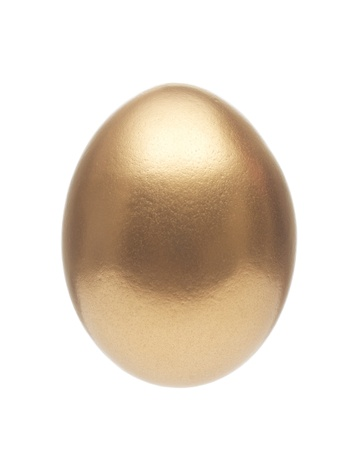 nest egg: Golden Egg Isolated on White Background