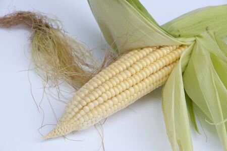 shucked: Corn On The Cob