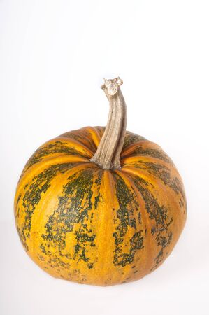 An orange pumpkin on a white bachground