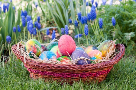 Easter eggs in  brown pannie on the grass photo