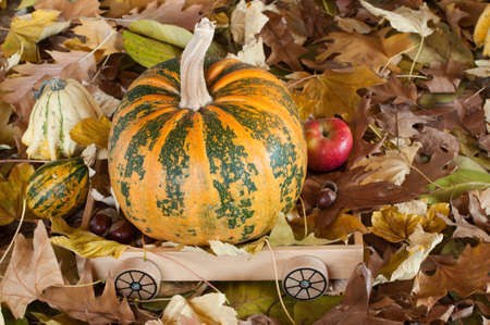 Orange pumpkin on a wooden trolley Stock Photo - 12353524