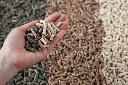 biomasse: Different kind of pellets in female hand- pine,beech,sunflower, selective focus on the hand Stock Photo