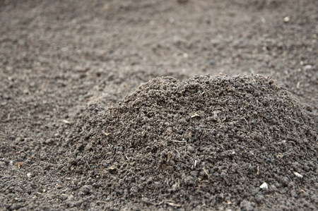 humus soil: Soil- photography, humus soil, litlle lumps, heap