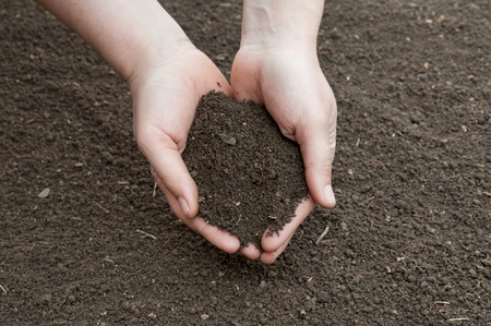 Soil- handful,female hands, humus soil photo