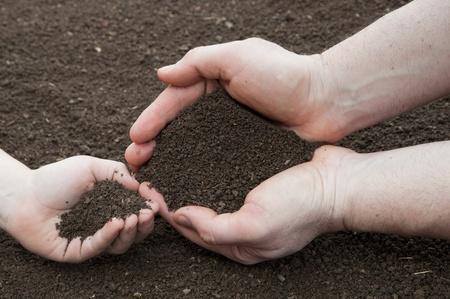 extreme angle: Soil- handful,kids ana male hands, humus soil Stock Photo